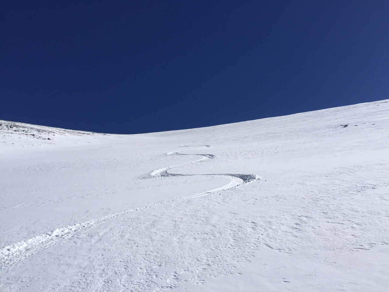 Creamy turns back to timberline in the NW face of the bowl.