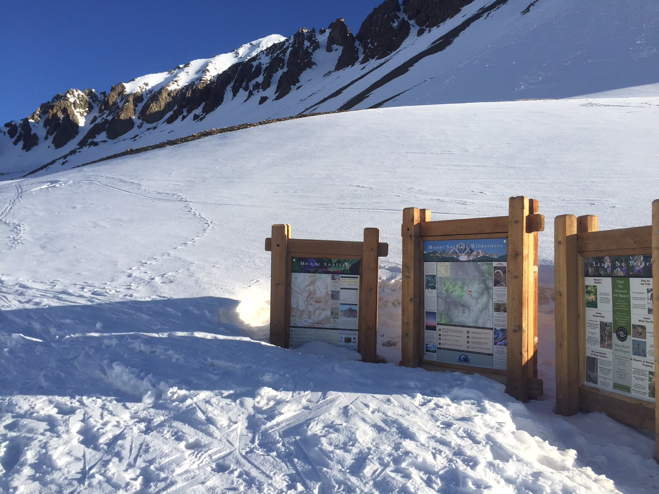A buried trailhead in Yankee Boy Basin.